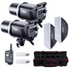 MS200-F Dual MS200 Studio Flashes Kit